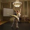 Dance Tales for Adults - Swan Lake